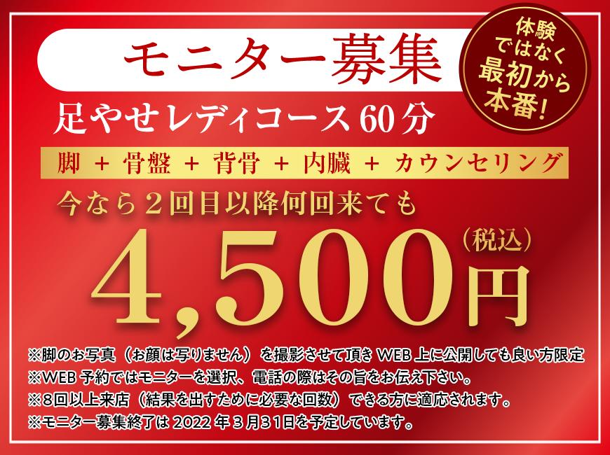 モニター募集 4,500円